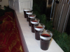 mulled-wine-drinks